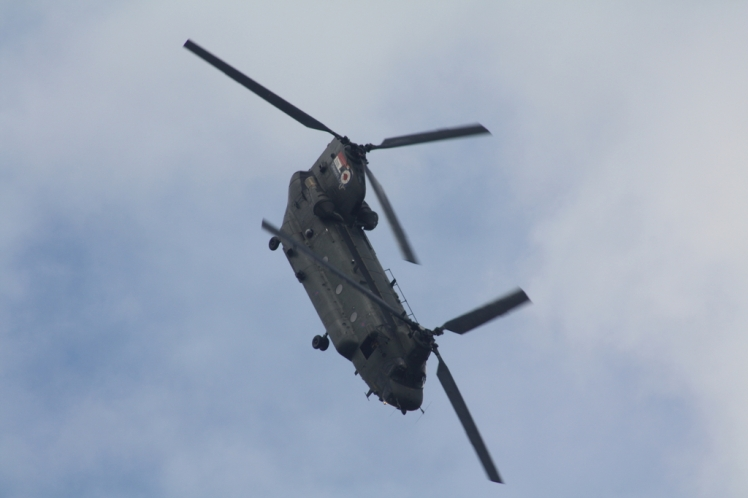 Air Tattoo 2012-211