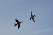 "Hawker Hunter F.58A ""Miss Demeanour"" & North American P-51D Mustang ""Ferocious Frankie"""