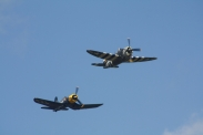 "Republic P-47G Thunderbolt ""Snafu"" & Goodyear FG-1D Corsair"