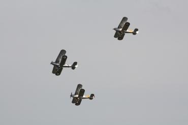 Hawker Demon I, Nimrod I & Nimrod II