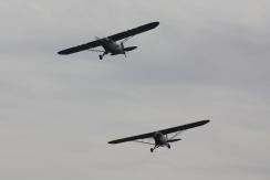 Piper J-3C-65 Cub & Piper L-4H Grasshopper
