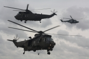 Westland Lynx AH Mk. 7 & Westland Sea King HC Mk. 4s