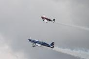 Extra EA-300S & EA-300 (R/C Model)